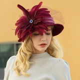 Ladies' Classic/Elegant/Simple Wool/Net Yarn With Feather Bowler/Cloche Hat (196192286)