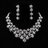 Flocos de neve em forma Liga/Strass Senhoras Conjuntos de jóias (011019345)